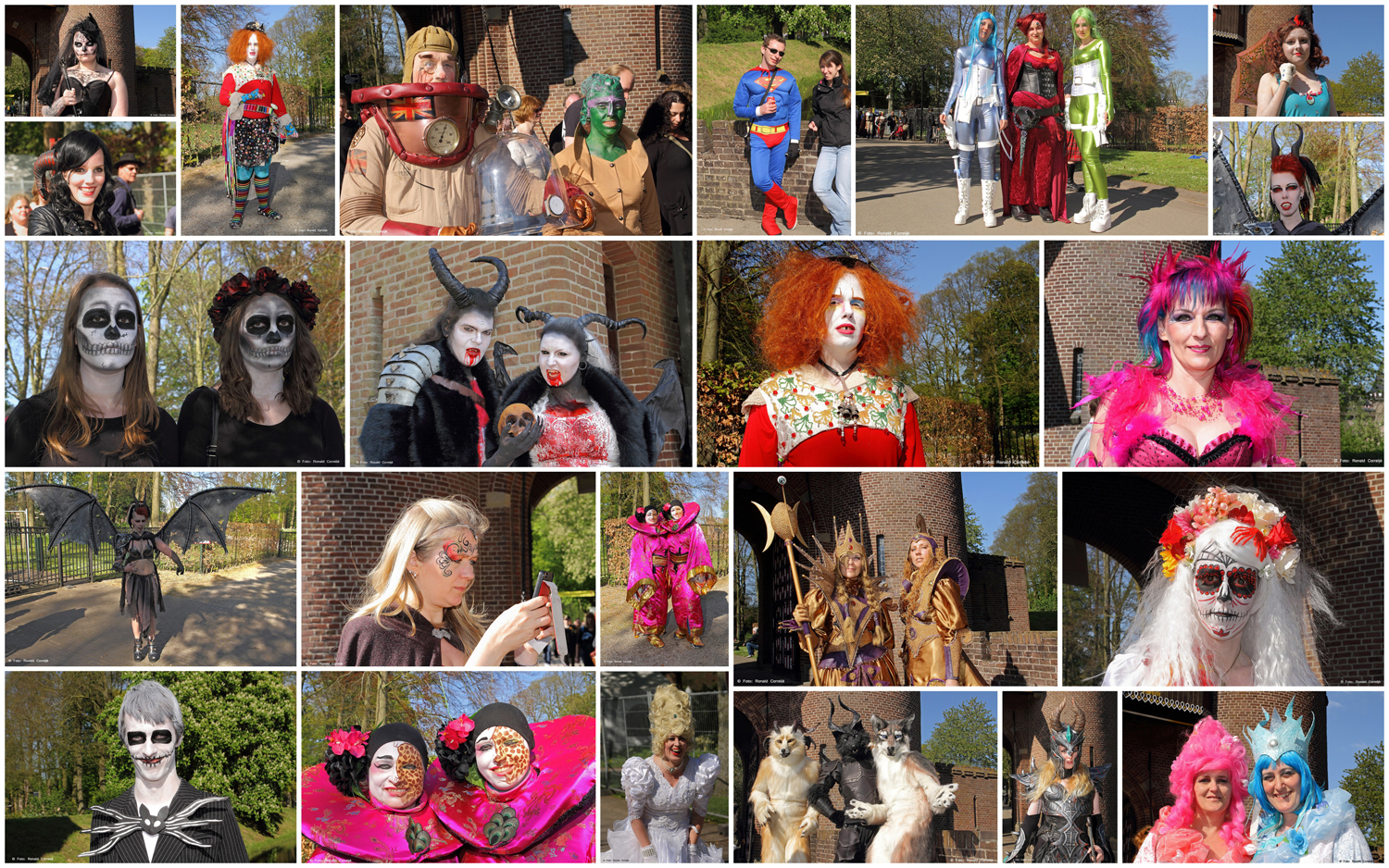Collage ELFIA 2014