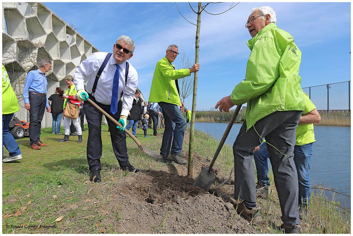 B&W Utrecht plant bomen