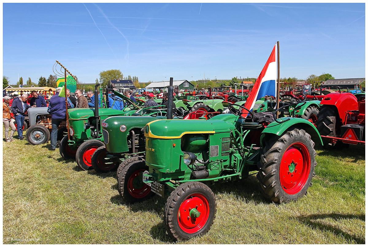 oude tractoren op een weiland