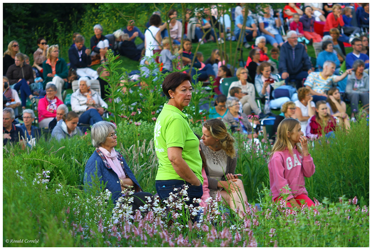 publiek in tuin