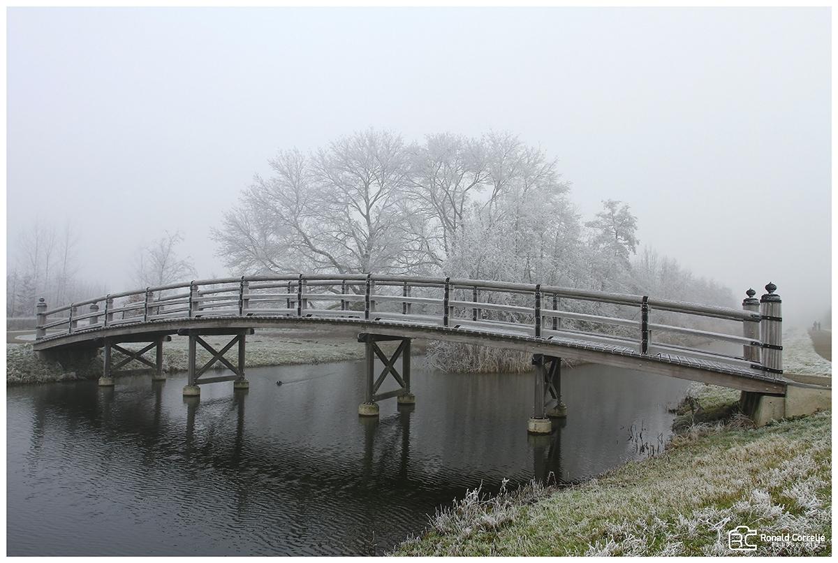 houten brug in besneeuwd landschap