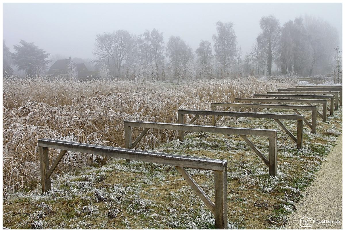 houten fietsenrekken en riet in de sneeuw