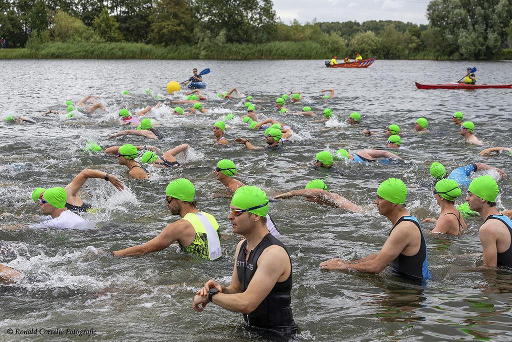 Groep zwemmers in het water